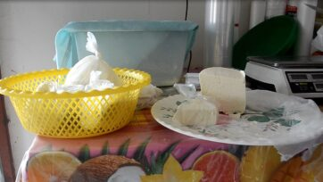 Made mainly in rural areas, queso fresco is a Mexican product that accompanies various dishes. (Charlie Moron/Café Words)