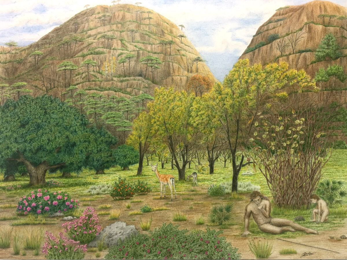 Artistic reconstruction of the landscape of the Bolomor Cave in the Valldigna Valley, Spain, during the Middle Pleistocene. (Gabriela Amoros/Real Press)