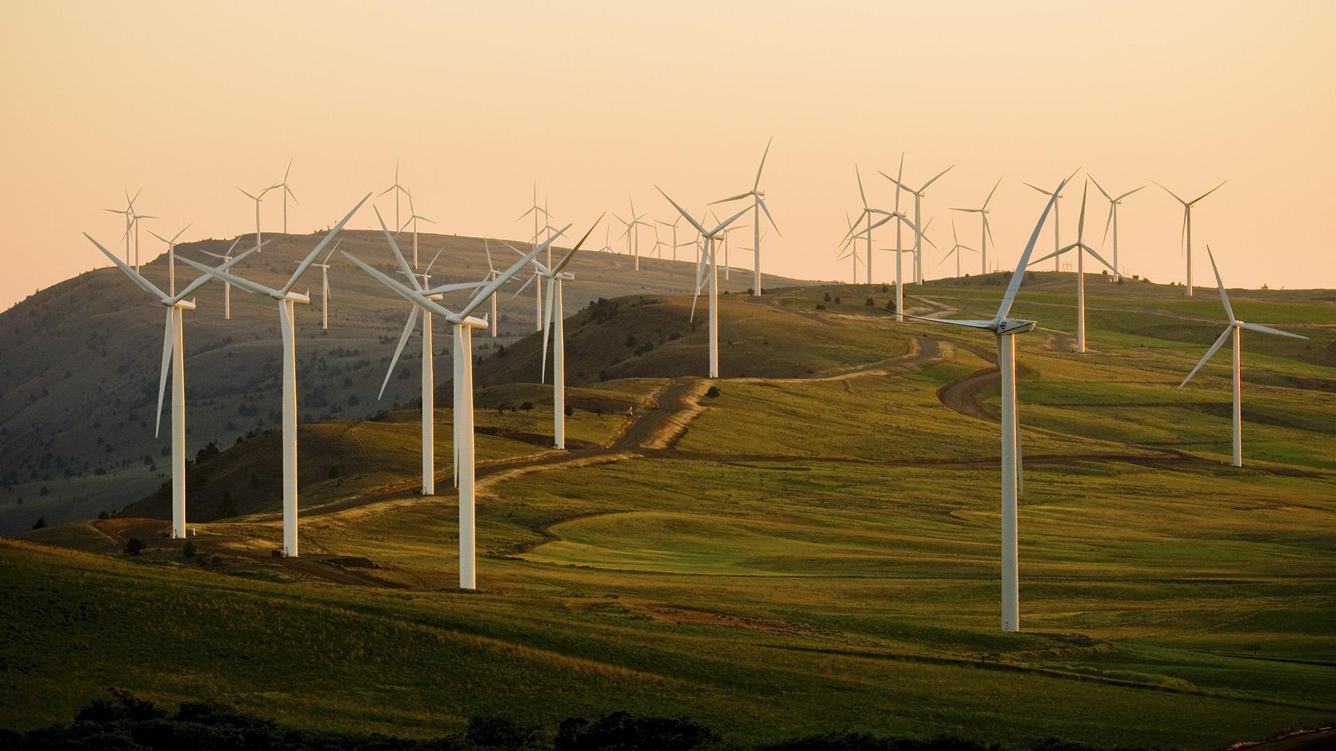 Australia's Resources Minister To Explain Wind Farm Funding Veto