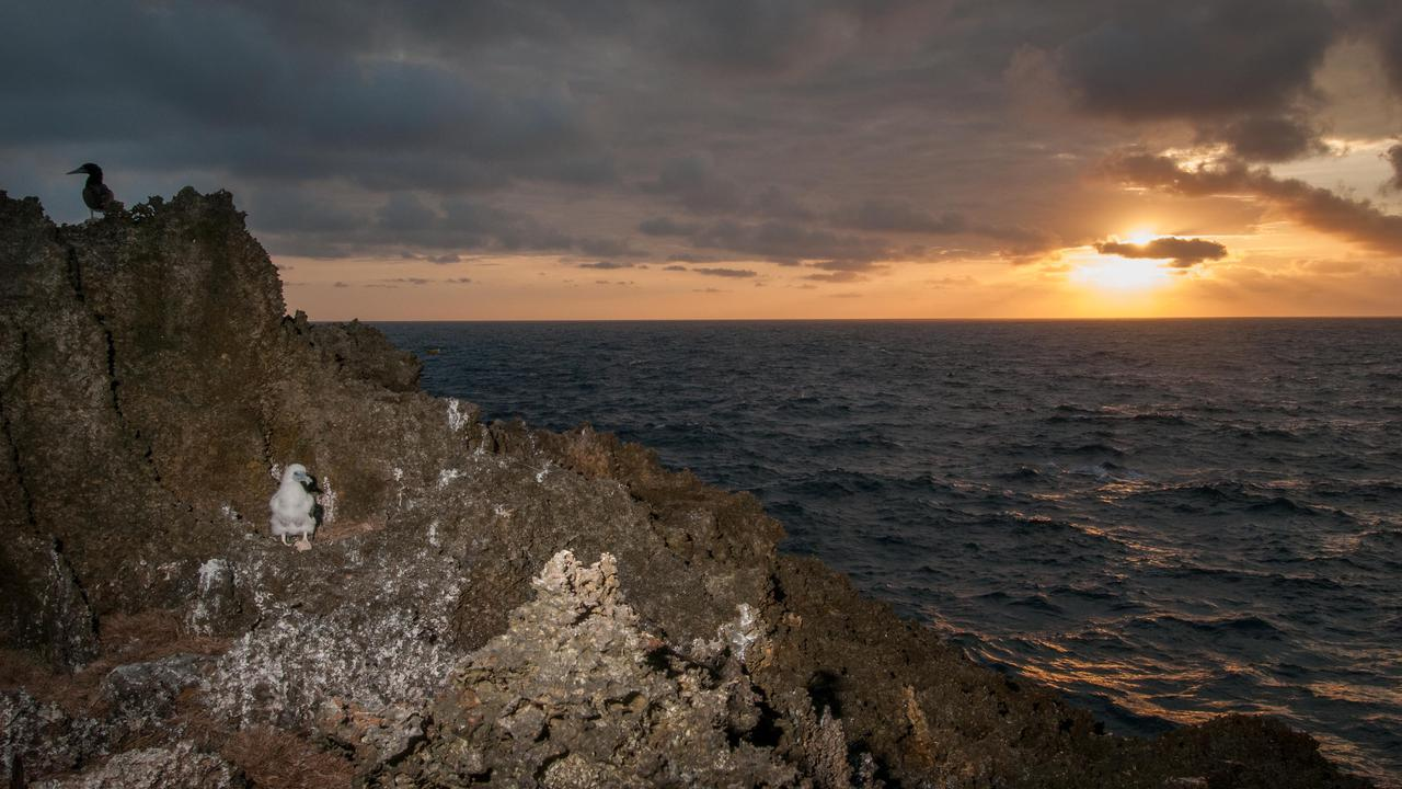 More Ocean Areas Protected Off Australia In Federal Budget