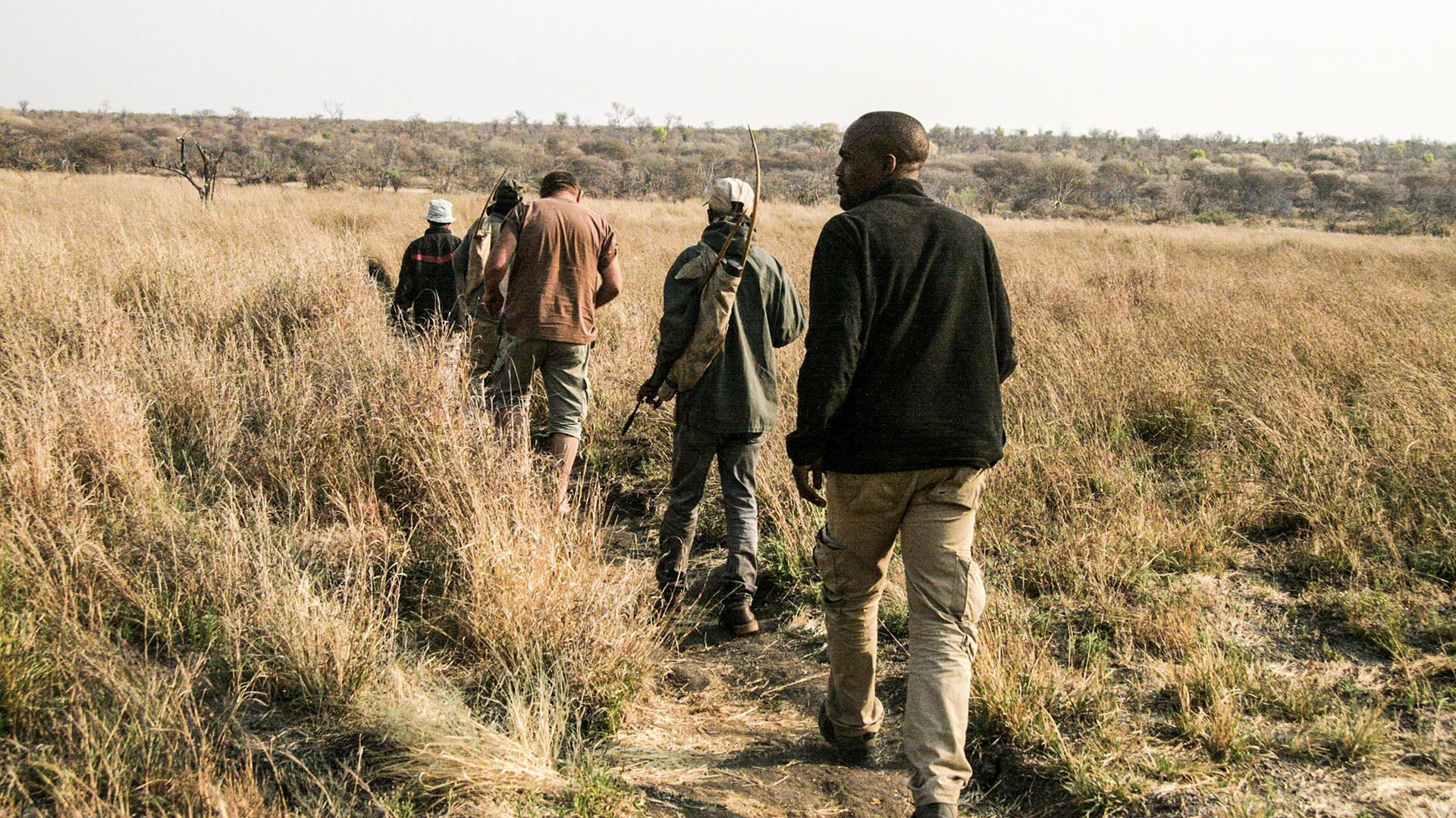Footprints In The Sands: The Dying Craft Of Animal Tracking Among Kalahari Bushmen