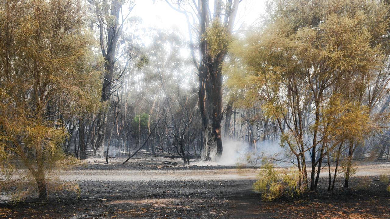 Rare May Bushfire Risk For South Australian State