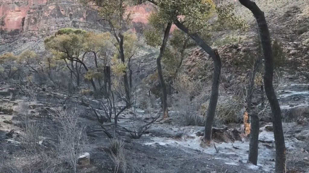 VIDEO: Senior Hiker Who Sparked $53 Million Grand Canyon Blaze Warns Others