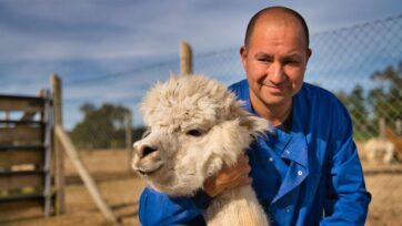 El Dr. Alejandro Rojas abraza una alpaca, su ''incentivo'' para los estudios. (Cortesía: Alejandro Rojas)