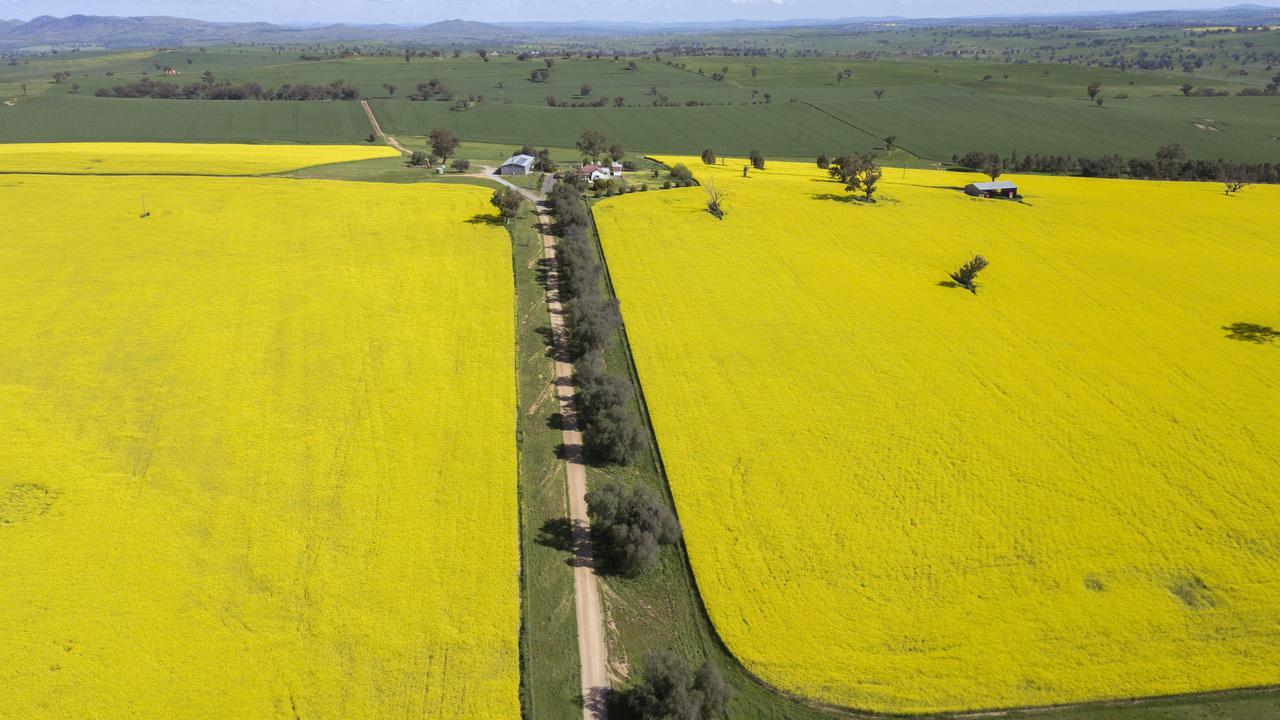 Australia Eyes Close To Record Crop Plant