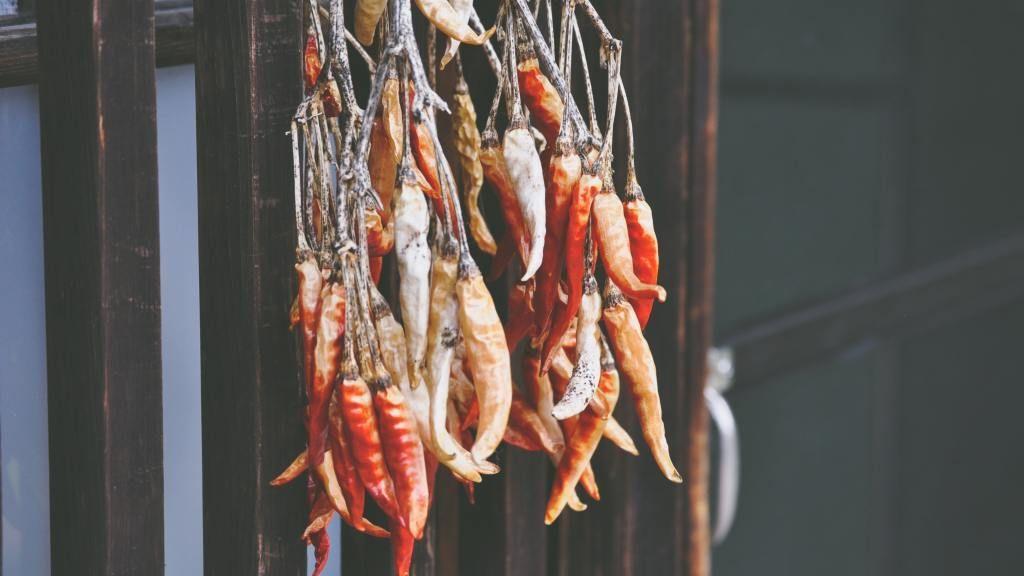Chiles secos son el ingrediente secreto en gastronomía mexicana