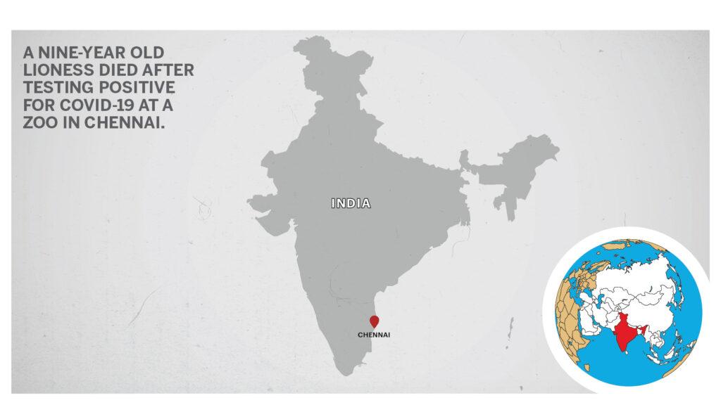 Map of Chennai India