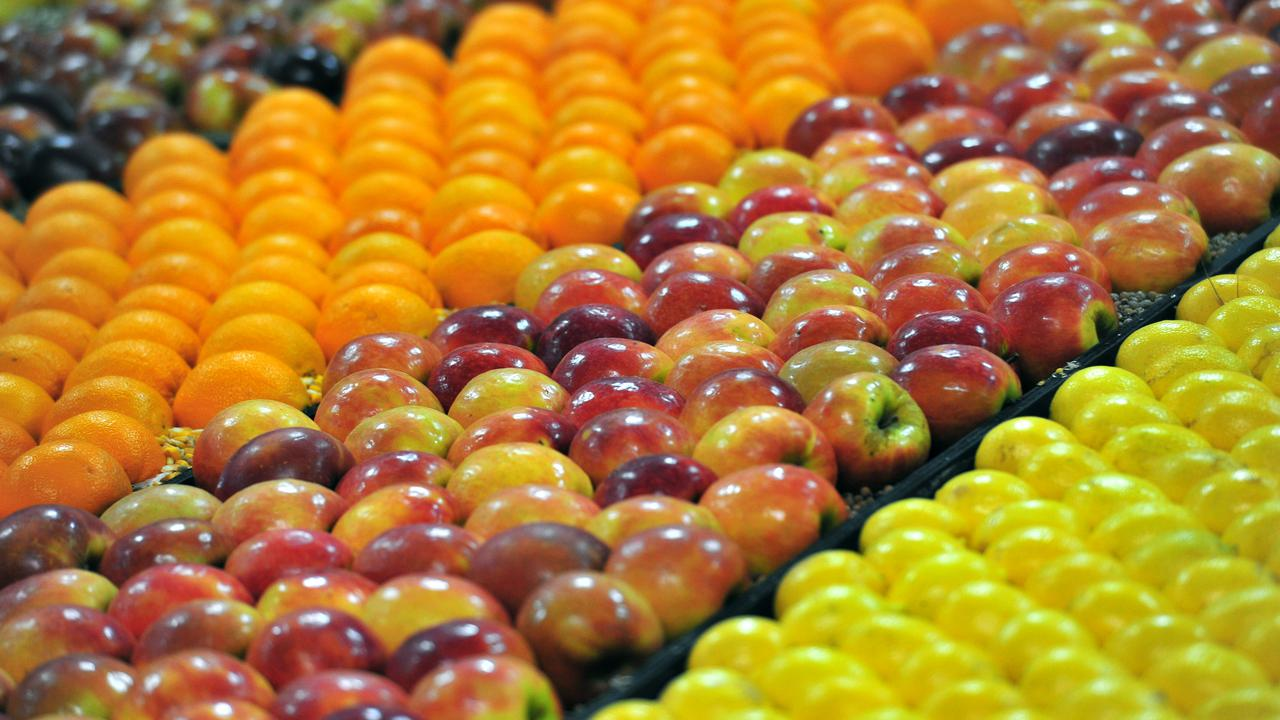 Southern Australia Fruit Fly Crisis Threatens Horticulture Sector