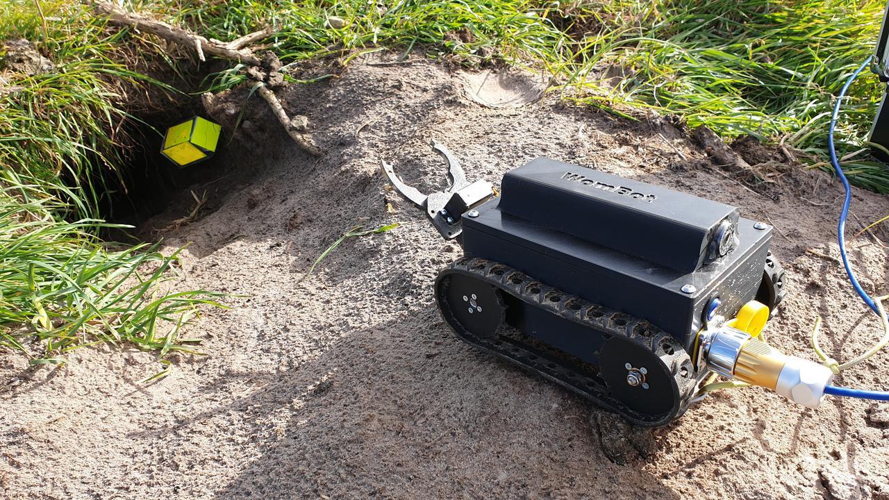 Robot 'Wombot' Explores Wombat Burrows In Australia