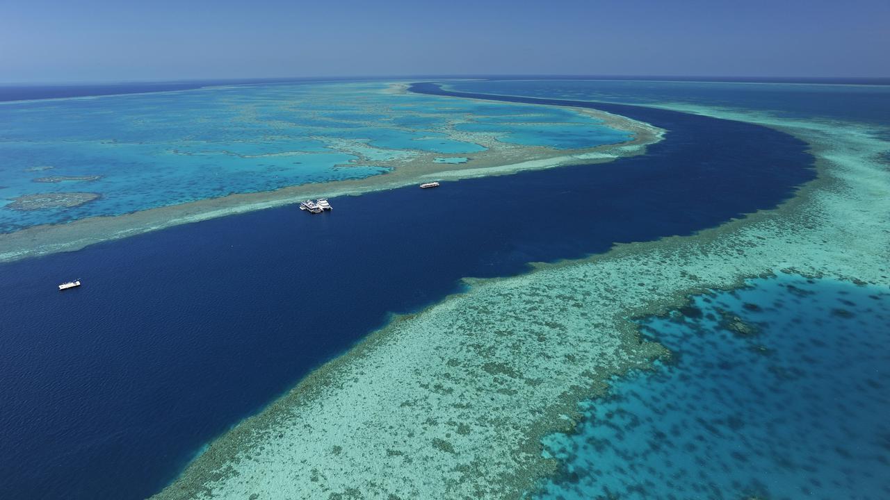 Australia's Queensland Government Unveils $209 Million In Reef Funding