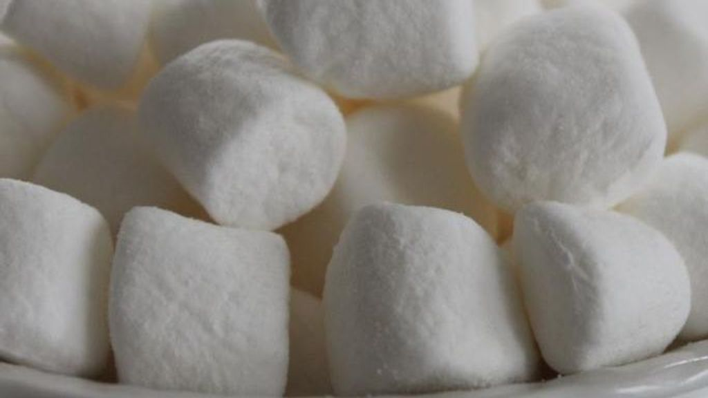 Marshmallows Have Undergone Many Changes Throughout History