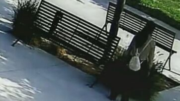 Screenshot of surveillance video from the park in California where the baby was abandoned. (Los Angeles County Sheriff's Department/Zenger News)