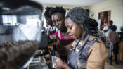 Bitter-Sweet: Kenya's Complicated Affair With Coffee