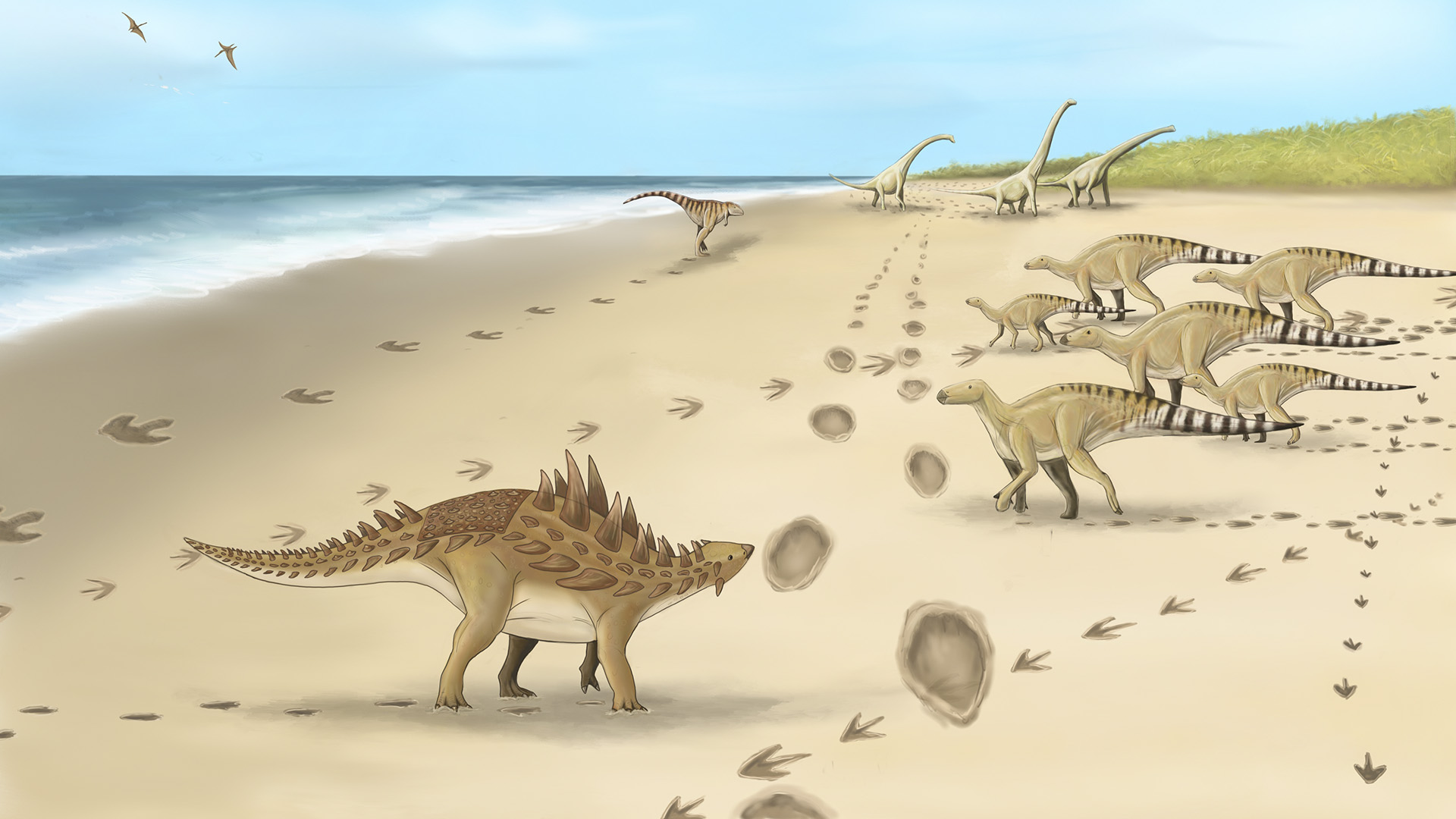 Footprints From Six Dinosaur Species Discovered In UK's Kent