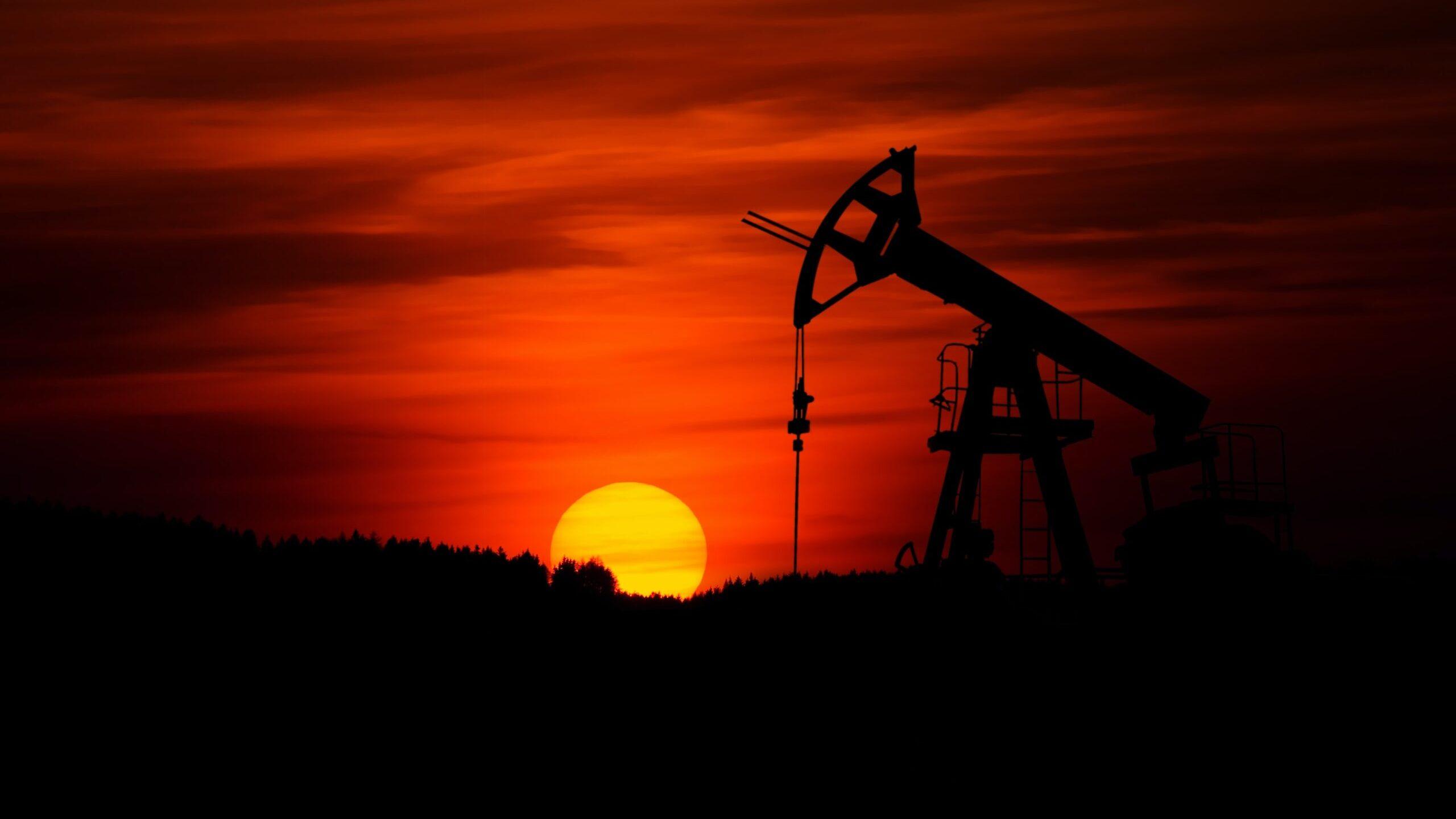 US Petroleum Data Show Healthy Demand, Making Oil Exports Less Lucrative