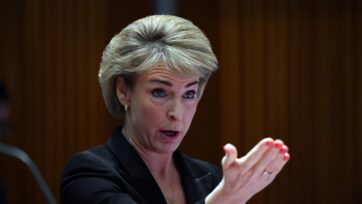 Michaelia Cash says the minimum age of criminal responsibility is an issue for the states.