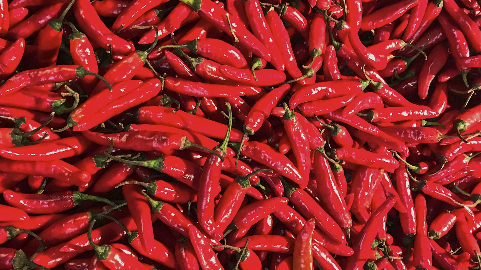 China-Pakistan Economic Corridor To Expand Chili Farming