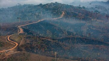 Fire in the Jamanxim National Forest, municipality of Novo Progresso. (Marizilda Cruppe/ Amazon/RealAmazon)