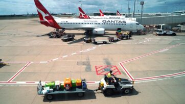 Qantas domestic flight numbers are expected to halve amid the latest COVID lockdowns.