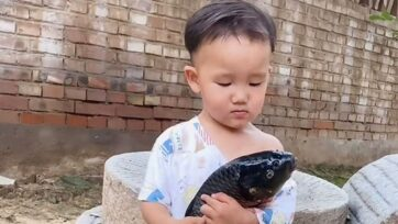 A young boy cried for his fish friend when his grandmother wanted to cook it for lunch in Handan, China. (chengsiyuan118/Zenger)