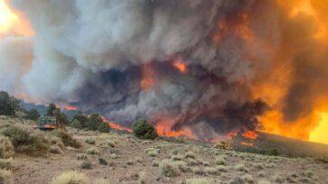 Un rayo provocó el incendio Tamarack. Las llamas alcanzaron ya la autopista 395. (@TMFPD/Zenger)