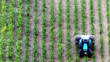 Bundaberg mayor Jack Dempsey says Queensland's sugarcane industry was built on the back of slavery.