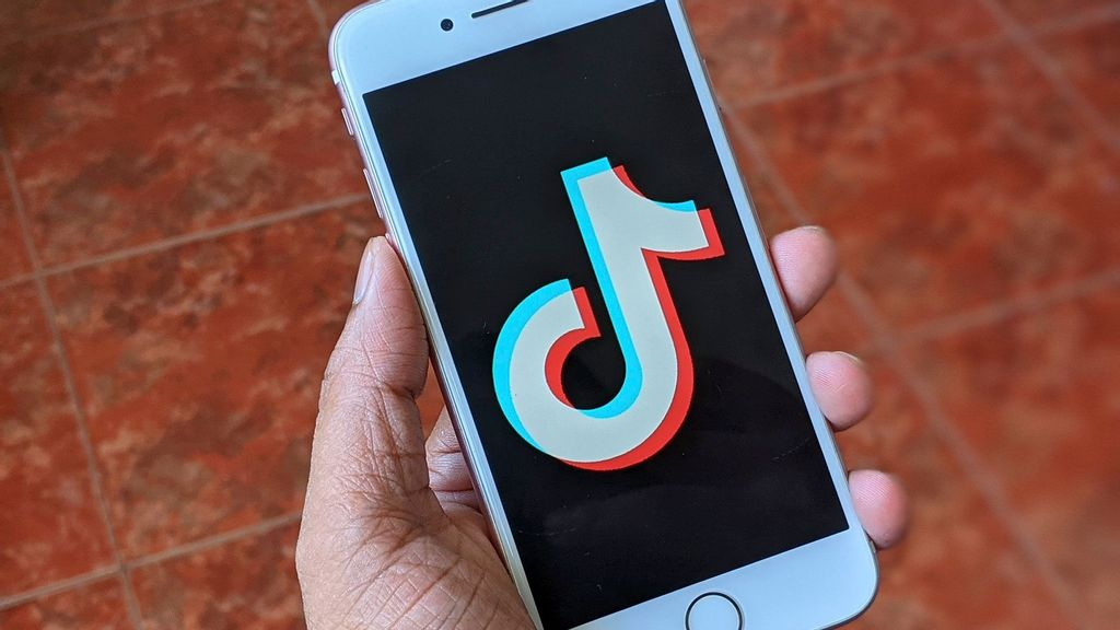 Pakistan Court Urges Authorities To Review Ban On Chinese App TikTok