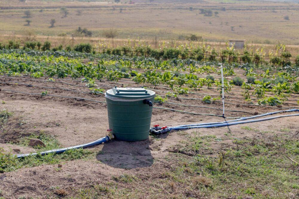 New Gravity Watering System Saves Resources And Raises Crop Yields