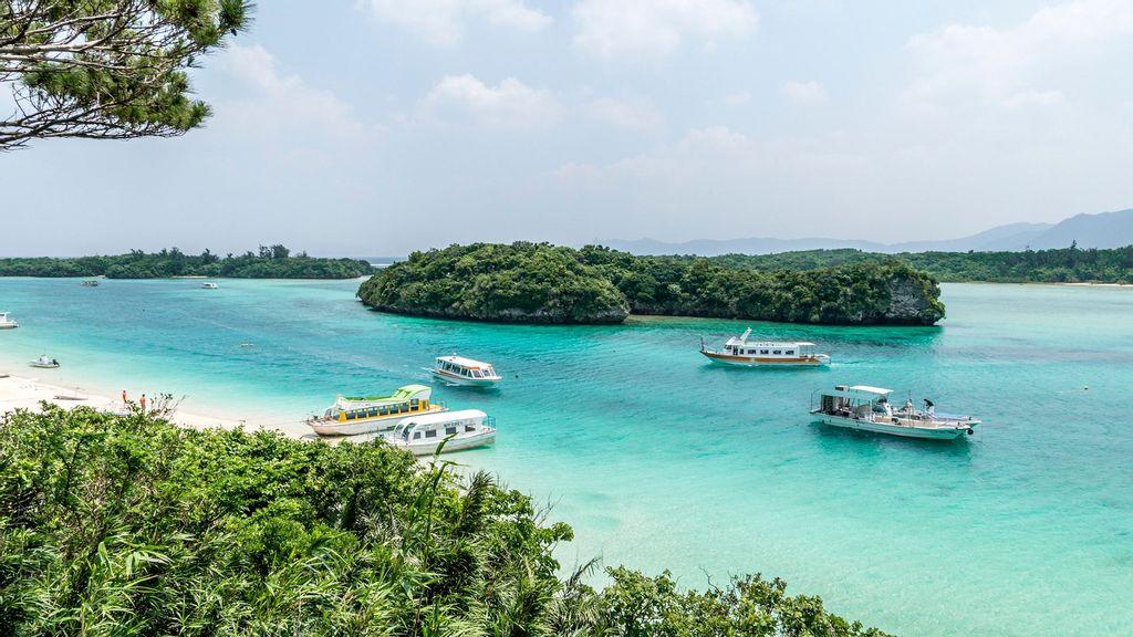 Water Buffalo-Drawn Carts Are Visitors' Only Hope On Japan's Ishigaki Island