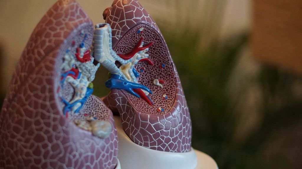 Lung Changes Can Be Early Warning Of Breast Cancer Spread