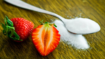 Fructose obesity