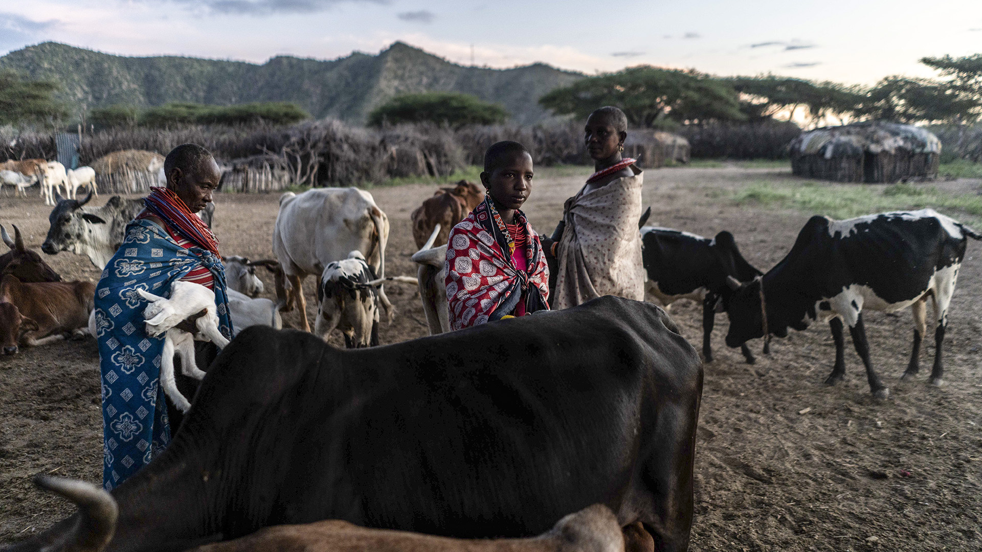 Nearly 8 Million Face Starvation As Drought Ravages Parts Of East Africa