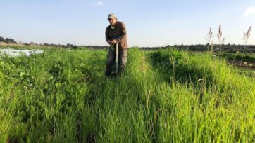 Ben Rosenberg will let his organic farm rest during the sabbatical year. (Courtesy of Ben's Farm)