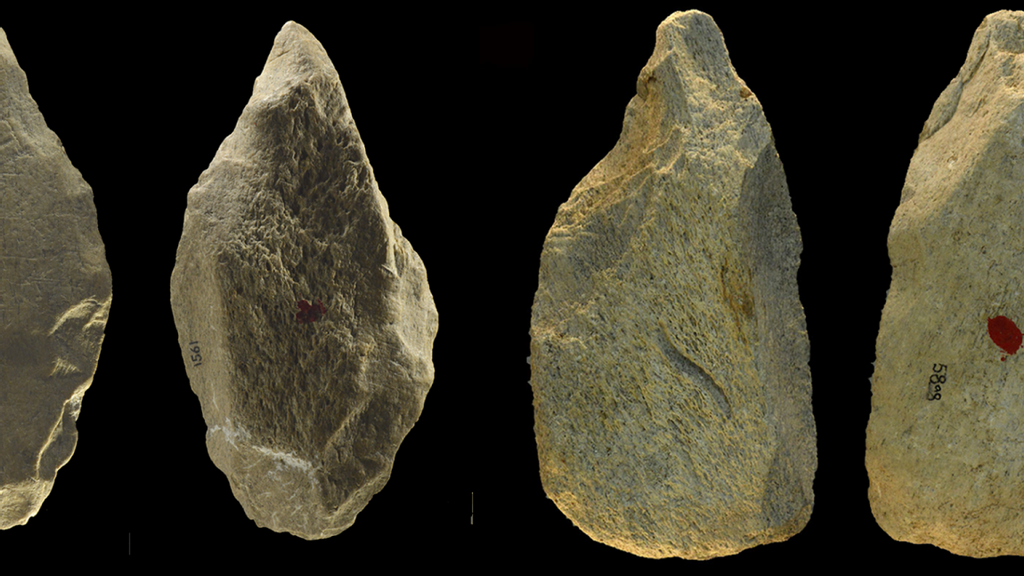 Elephant Bone Tools Found At Ancient Site Were Surprisingly Advanced