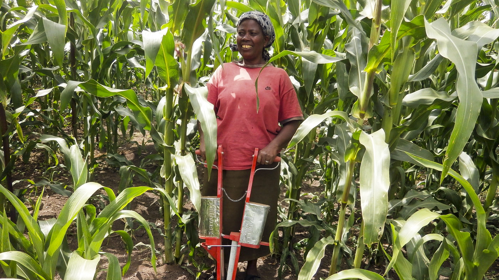 Kenyan Farmers Reaping Big From Conservation Agriculture