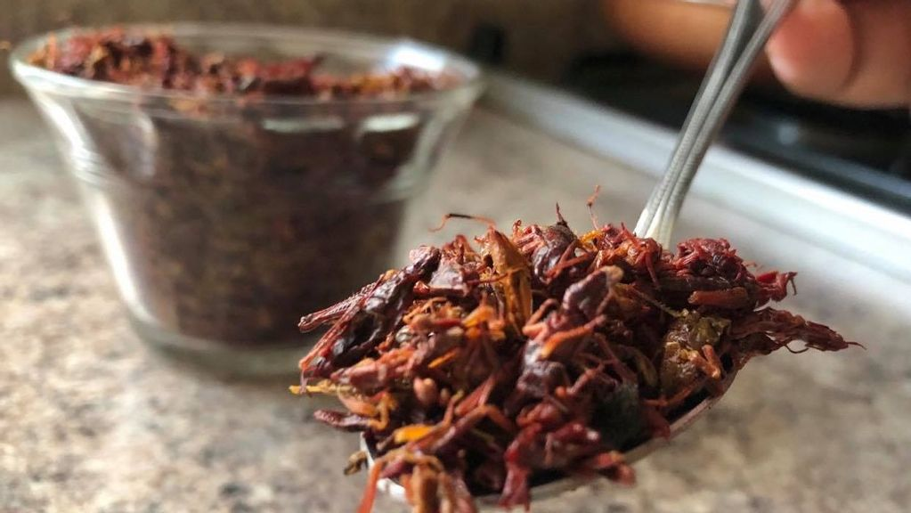 Crickets, The Pre-Hispanic Delicacy Could Be The Food Of The Future