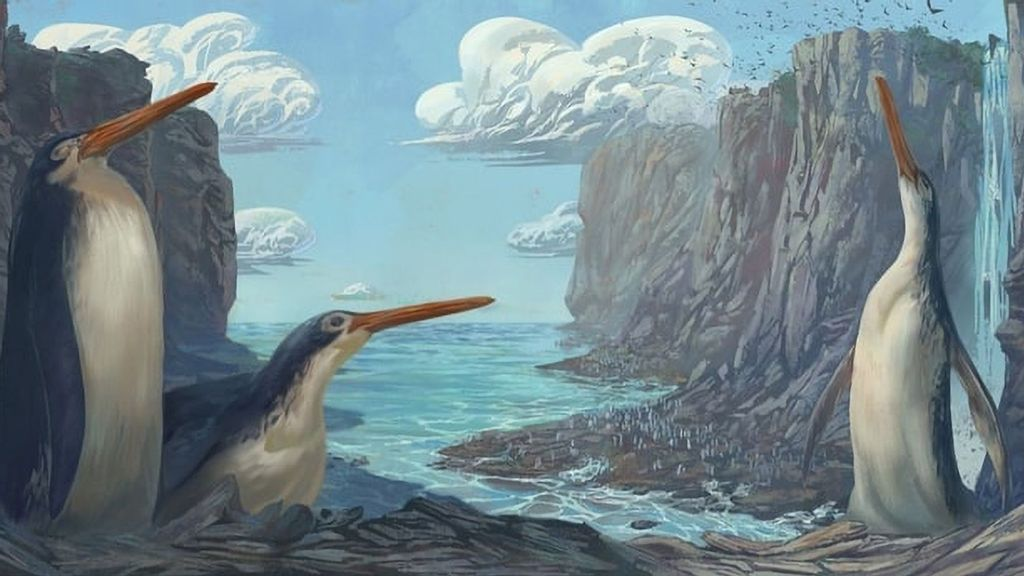 Whatever You Do, Don't Peck A Fight: Prehistoric Penguin Was Nearly As Tall As Some Men