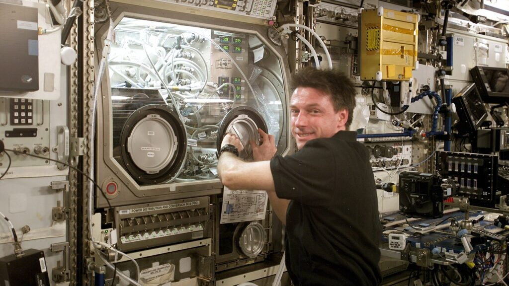 Astronaut Michael Foale inspects the Microgravity Science Glovebox on board ISS during Expedition 8. (NASA)