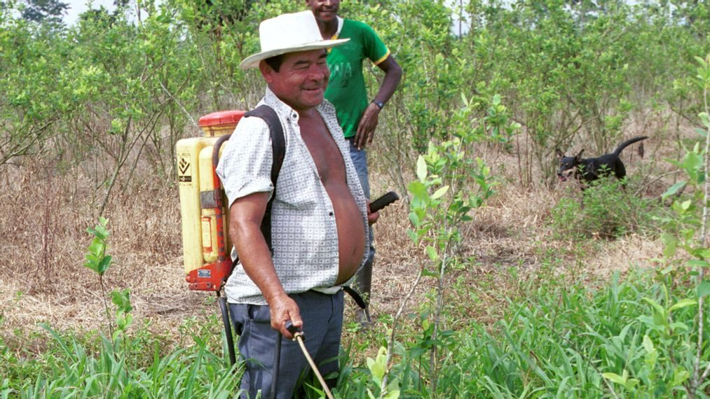 War On Drugs: Fumigation Of Illegal Crops Triggers Pre-Election Controversy In Colombia